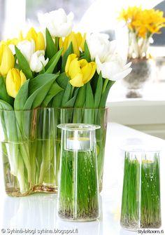 kynttilät,kukat,tulppaanit,pääsiäinen,kasvit sisustuksessa