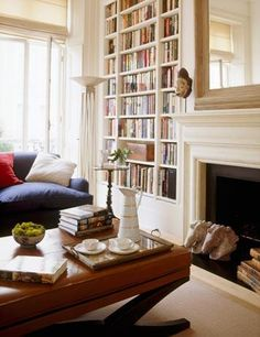 Bookcase and fireplace idea