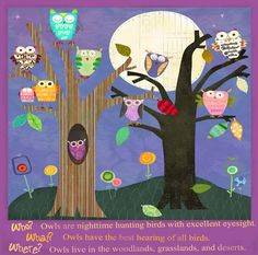 """Owls"" animal wall art by Amy Schimler for Oopsy daisy, Fine Art for Kids $99"