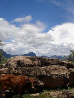 Kenya, Africa (taken by Sarah Croaker)