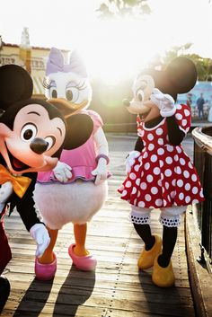 Mickey mouse, Daisy duck, and Minnie mouse Disneyland photography