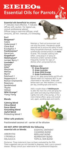 Essential oils list for parrots
