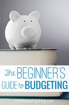 Ditch expensive software and learn how to create a simple budget from scratch. This Beginner's Guide to Budgeting series will hold your hand along the way, and includes FREE printables!
