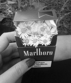 8 Inesperados regalos que puedes hacer con una cajetilla de cigarros