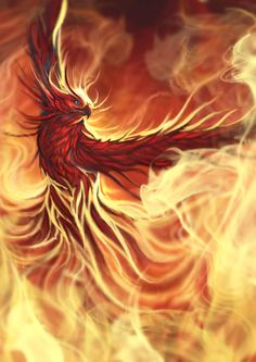 Phoenix by Aaron Pocock (now this is how I believe a phoenix should look)