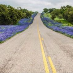 Backroads Texas Style - Click image to find more texas Pinterest pins