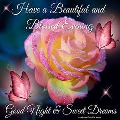 Have A Beautiful And Blessed Evening goodnight good night goodnite goodnight quotes goodnight quote goodnight quotes for family goodnight quotes for friends god bless goodnight quotes good evening good evening quotes Good Night Thoughts, Good Night Friends, Good Night Wishes, Good Night Sweet Dreams, Good Morning Good Night, Good Night Prayer, Good Night Blessings, Night Love, Good Night Messages
