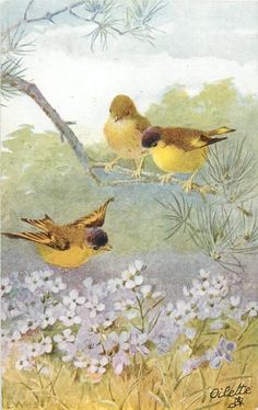 two yellow/brown birds sit on a branch while one fllies over violets