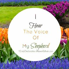 #DailyDeclarations I Hear The Voice Of My Shepherd!  ✡My sheep listen to my voice; I know them, and they follow me.-John 10:27 #Blessed #Scriptures #SpeakLife #WordPower #Affirmation #Bible #BibleVerses #Britchadashah #inspiration