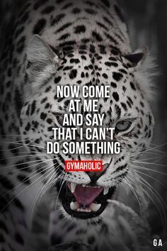 Now Come At Me Fitness Revolution -> http://www.gymaholic.co #fit #fitness #fitblr #fitspo #motivation #gym #gymaholic #workouts #nutrition #supplements #muscles #healthy
