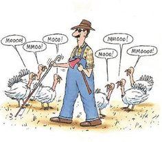 Blind farmer on thanksgivingSollision - http://asianpin.com/blind-farmer-on-thanksgivingsollision/
