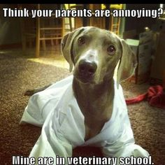Vet school parents