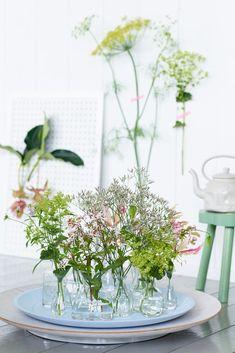 Flowers | Summer | Pure Season | Zomerbloemen