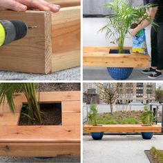 Craft this DIY living bench to place on your porch or in your backyard for a change of scenery. Get creative at home with Miracle-Gro®. Indoor Garden, Outdoor Gardens, Elevated Garden Beds, Diy Planter Box, Planter Garden, Diy Projects For Beginners, Small Gardens, Garden Projects, Pallet Projects