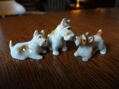 Sweet Miniature Porcelain Terriers. Set Three by BarefootAndCivil