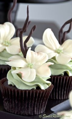 May be our next cupcake challenge. Chocolate Mint Cupcakes with beautiful white modeling chocolate flowers Fancy Cupcakes, Pretty Cupcakes, Beautiful Cupcakes, Yummy Cupcakes, Wedding Cupcakes, Cupcakes Design, Elegant Cupcakes, Cupcake Wedding, Mocha Cupcakes
