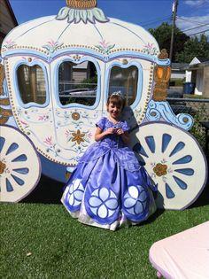 Washable Sofia the First dress up dress