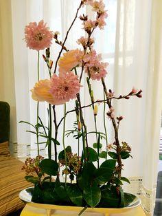 3月アレンジ「パラレル」(ドイツ式 ガーデンスタイル) パラレルとは平行のこと。オアシスにすべての花を垂直に指す。密と透を作る。高さは器とのバランスで。(今回は65cm)構成決めた後はすべての花種でどれか1本ずつセンターを通す。最後に足下の低位置で再度構成を作って全体のバランスを安定させる。 Flower Arrangements, Glass Vase, Flowers, Plants, Home Decor, Floral Arrangements, Decoration Home, Room Decor, Plant