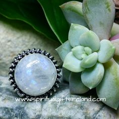 Rainbow Moonstone Light Ring Sterling Silver