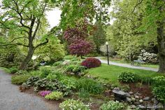 Great itinerary with fun filled suggestions of budget-friendly activities to enjoy while visiting Halifax, Nova Scotia! Halifax Public Gardens, Travel Guides, Travel Tips, Victorian Gardens, Nova Scotia, Paths, Budgeting, Sidewalk, Canada