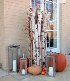 decorating with birch for christmas - Google Search
