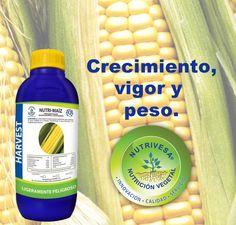 NUTRI-MAÍZ para ayudar al crecimiento, vigor y llenado del grano completo en la mazorca.  Incrementando el peso del grano, Nutrivesa Cosechando un futuro mejor.