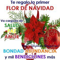 Te regalo la primer FLOR DE NAVIDAD va cargada de SALUD, PAZ, AMOR BONDAD, ABUNDANCIA y mi BENDICIONES más.
