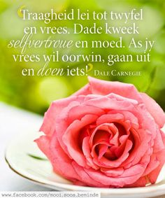 Afrikaans Quotes, Hart, Dale Carnegie, Printable Quotes, Printables, Quotations, Verses, Motivational, Teaching