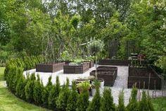 planteringar pergola - Sök på Google