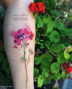 Example of a geranium watercolor style tattoo. I'd prefer the petals were more defined, but I love the shading and splashes of color around the flowers.