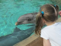 Danielle Day S. and her three year old daughter enjoying a special moment at 'Dolphin Cove' at SeaWorld Orlando.