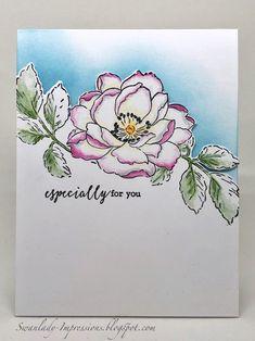 Swanlady Impressions: Soft flower