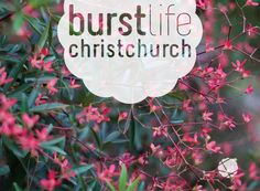 Christchurch City Branding