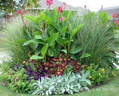 tropical with canna lilies Canna Lily Landscaping, Tropical Landscaping, Outdoor Landscaping, Front Yard Landscaping, Outdoor Gardens, Landscaping Rocks, Garden Yard Ideas, Garden Trees, Unique Plants