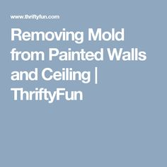 how to clean mould from walls and ceilings