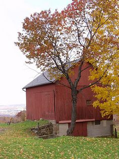 Beautiful Autumn day in the country.  This  blog has great autumn quotes, too.