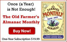Plant Companions: List for Ten Common Vegetables - The Old Farmers Almanac Monthly