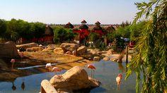 37. Friguia Zoo, Tunisia