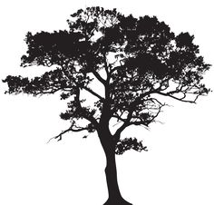 Silhouette Tree PNG Clip Art Image