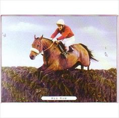 Red Rum from Great Racehorses of Our Time Trading Card Limited edition on eBid United Kingdom