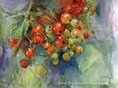 currants berries watercolor painting