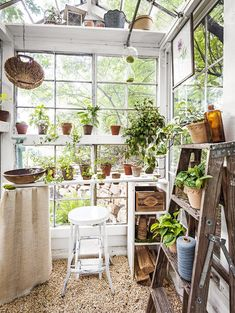 Gardeners turn to mini greenhouse gardening when they need to create a specific microclimate or lack space for a larger. the Mini greenhouse can be used for protected crops such as tomatoes, peppers, cucumbers and aubergines. Diy Greenhouse Plans, Window Greenhouse, Lean To Greenhouse, Outdoor Greenhouse, Cheap Greenhouse, Greenhouse Wedding, Greenhouse Gardening, Portable Greenhouse, Small Glass Greenhouse
