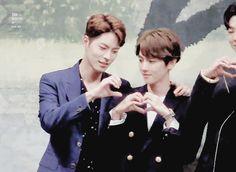 [GIF] 24.08.16 - Baekhyun e Hong Jonghyun @ Coletiva de imprensa de 'Moon Lovers'. (cr. 허니집)