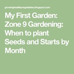 My First Garden: Zone 9 Gardening: When to plant Seeds and Starts by Month Zone 9 Gardening, Florida Gardening, Small Space Gardening, Regrow Vegetables, Organic Vegetables, When To Plant Seeds, Square Foot Gardening, Planting Seeds, Container Plants