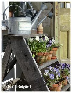 An intimate space created from recycled and reclaimed wood and windows, a potting shed is our idea of heaven! Love Garden, Dream Garden, Garden Art, Garden Tools, Flower Pots, Flowers, Garden Inspiration, Container Gardening, Indoor Plants