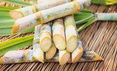 Duurzame vernieuwing van voedselverpakking