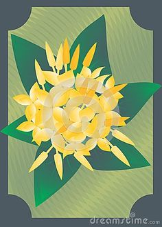 Vector Drawing of Yellow Suriname Fajalobi Flower