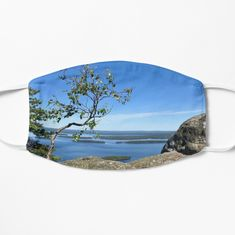 Happiness Journal Tree on Top by HappinessJ Old Rock, Rock Formations, Sunglasses Case, My Photos, Happiness, Journal, Happy, Top, Pictures