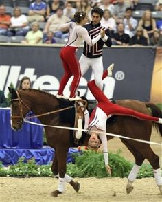 Equestrian Vaulting - World Equestrian Games 2010 Dangerous Sports, Trick Riding, Rhythmic Gymnastics, Equestrian Style, Vaulting, Horseback Riding, Animal Memes, Beautiful Horses, World