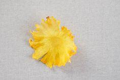 Kastenkuchen mit Ananasblumen| Backen mit Globus & Sallys Welt #46